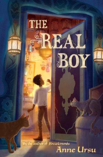 The Real Boy Anne Ursu